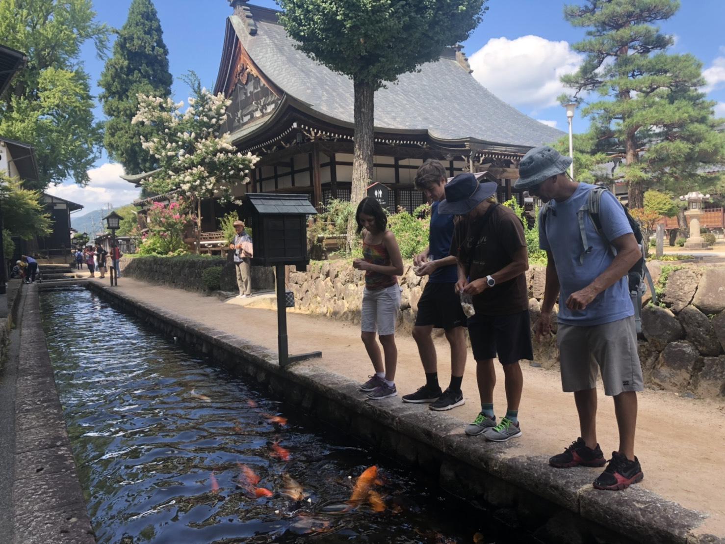 Hida Furukawa Walking Tour